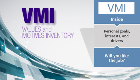 Values & Motives Inventory